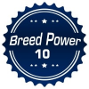 Thumbnail image for The Breed Power 10 for 2015