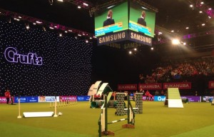 Episode 91: Dog Agility at Crufts post image