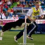 Episode 101: Interview with Crufts Judge Lee Gibson – Part 2 thumbnail