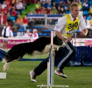 Episode 101: Interview with Crufts Judge Lee Gibson – Part 2 post image