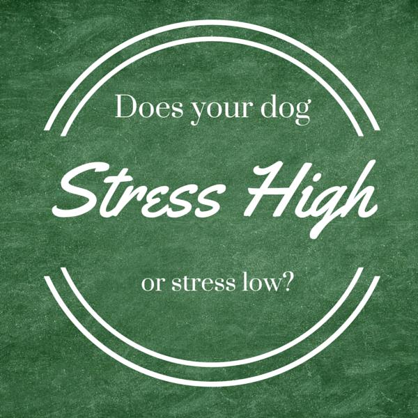 No sex drive stress