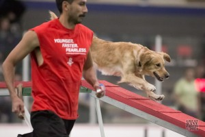 Episode 119: Handling (Three Aspects of Agility Training Part 4) post image
