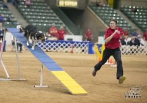 Episode 127: Interview with 2016 AKC 20″ National Agility Champion Sarah Baker post image