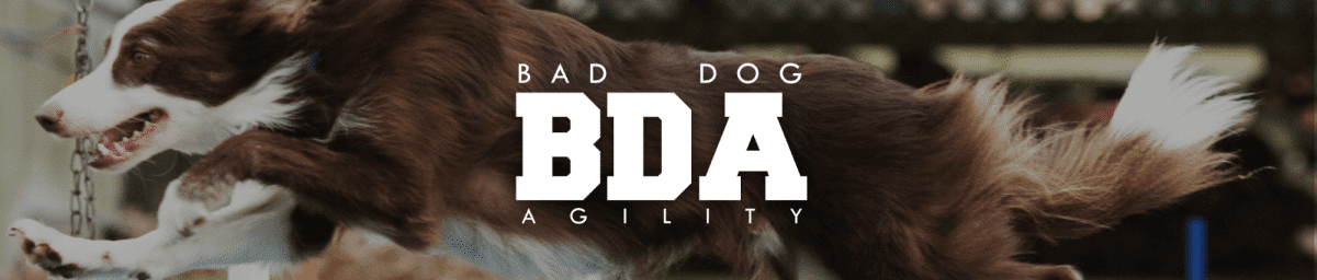 Bad Dog Agility header image