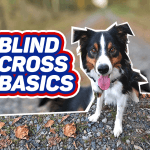 Blind Cross Basics thumbnail