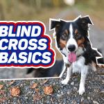 Blind Cross Basics thumbnail