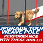 Upgrade Your Weave Pole Performance with These Drills thumbnail