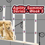 Agility Summer Series – Week 3 thumbnail