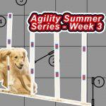 Agility Summer Series – Week 3 thumbnail