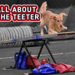 All About the Teeter thumbnail