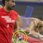 Episode 181: Should You Use a Clicker During Agility Training? thumbnail