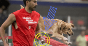 Episode 181: Should You Use a Clicker During Agility Training? post image