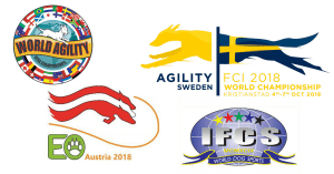 Episode 193: Who is the World Champion in Agility? post image
