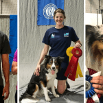 Episode 195: The 2018 AKC/FCI Agility World Championship Tryouts thumbnail