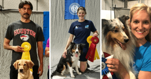 Episode 195: The 2018 AKC/FCI Agility World Championship Tryouts post image