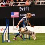 Episode 246: Should You React or Anticipate in Dog Agility? thumbnail