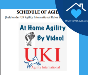 Episode 247: Interview with Greg Derrett on UKI At Home Agility Program post image
