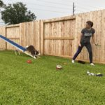 Episode 256: Proofing Checklist for Dog Agility thumbnail